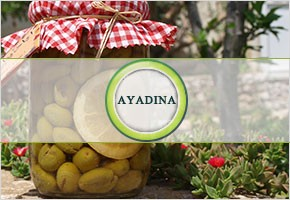 Ayadina - Home Made Food