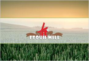 Ftouh Mills - Premium Quality Grains